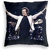 KWELRP Harry Styles - Funda de almohada de estilo casual con cremallera cuadrada suave con cierre decorativo (dos lados) 45 x