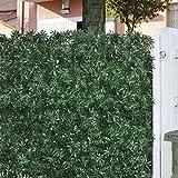 Ligustro da siepe siepi ligustro da siepe giardino for Siepe artificiale ikea