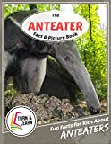 The Anteater Fact and Picture Book: Fun Facts for Kids About Anteaters (Turn and Learn)