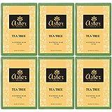 Aster Luxury Tea Tree Premium Handmade Bathing Bar - Set of 6 (125g each)
