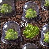 ProBache - Cloche à salades X6 serre de protection pour plants