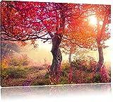 Traumhafte Herbstlandschaft Format: 100x70 auf Leinwand, XXL riesige Bilder fertig gerahmt mit Keilrahmen, Kunstdruck auf Wandbild mit Rahmen, günstiger als Gemälde oder Ölbild, kein Poster oder Plakat