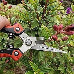 TECOOL Ciseaux Jardin, Acier Carbone Ciseaux Multi-Usages Main Émondeuse Pruner pour Jardin récolte de Fruits et légumes, Cisailles Jardin, Noir Rouge