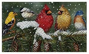 Evergreen Snowy birdsembossed Fußmatte, 45,7x 76,2cm