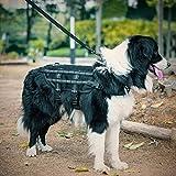 1T Gear OneTigris Leicht Hundeweste Taktische K-9 Mesh Atmungsaktiv Harness MOLLE Hunde Geschirr Verstellbar Hundeausbildung Geschirr für Training,Walking (M, Schwarz mit Reflexstreifen)