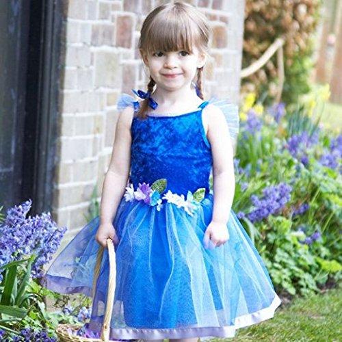 fee Fancy Dress Kostüm Mädchen Tanzkostüm (2-3 Jahre) (Flower Fairy Kostüm)