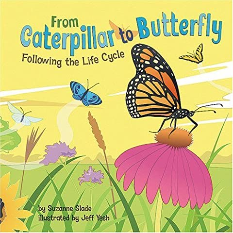 From Caterpillar to Butterfly: Following the Life Cycle (Amazing Science)