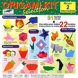 Origami Loisirs - Loisirs Créatifs - Origami Kit Selection 2 (Moyen) - Notice Illustrée + 81 Feuilles de Papier Origami - 15cm x 15cm