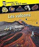 Pour Les Nuls présente Les volcans (French Edition)