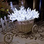Lychee 4m 13ft 40 LED impermeabile Batteria stella a cinque punte Operated luci leggiadramente della stringa per Outdoor Wedding dell