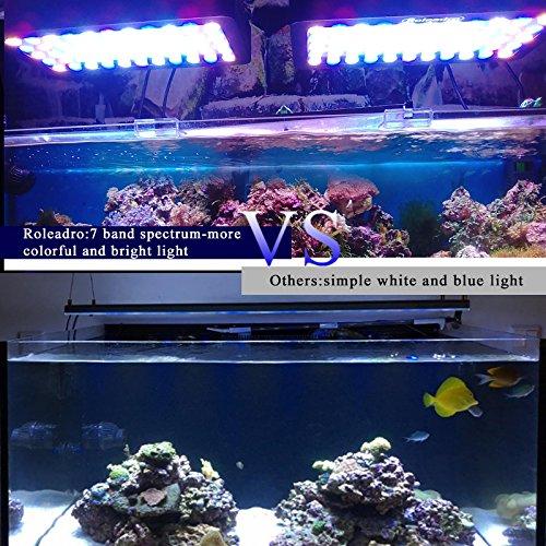 Roleadro 165w LED Aquariumbeleuchtung Dimmable für Fisch Riff Korallen Led Meerwasser Beleuchtung fur Fish Tank und Nano Aquarium 40x21x6cm Schwarz - 7