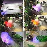 F Fityle Ultraschall LED Teich Brunnen Springbrunnen Nebelmaschine