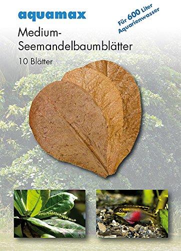 Aquamax 007 Seemandelbaumblätter, M