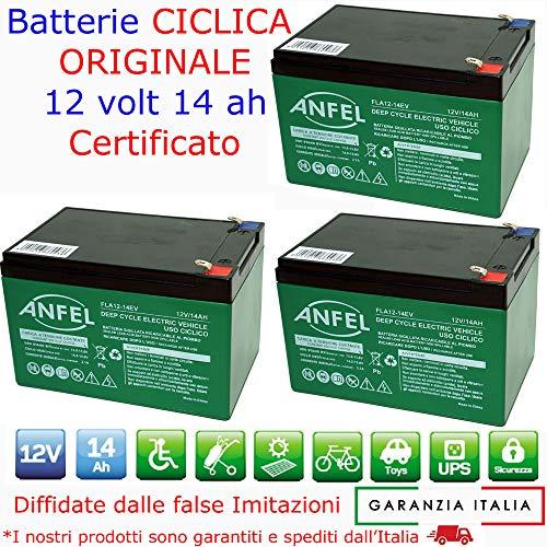 KIT 3 BATTERIE AL PIOMBO RICARICABILE 12V 36V 14AH CICLICA BATTERIA USO CICLICO PER BICI BICICLETTE ELETTRICHE MONOPATTINI QUAD ELETTRICI TRAZIONE ELETTRICA CONNETTORI 6,3mm DEEP CYCLE 6-DZM-14 6DZM14