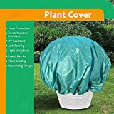 VIHII Winterschutz für Pflanzen gegen Frostschutz raue Wetterbeständigkeit Keimung von Samen 1.8 * 1.8 30g/m²