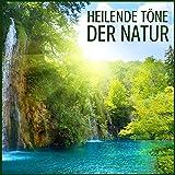 Heilende Töne der Natur - Naturgeräusche und Ruhe Tiefenentspannungsmusik zur Meditation, Stress Abbauen, Musiktherapie und Stressfrei Schlafen
