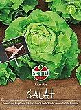 Sperli-Samen Salat, Kopfsalat Attractie (dt.: Attraktion), Saatband