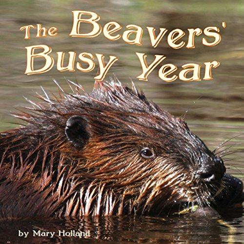The Beavers' Busy Year  Audiolibri