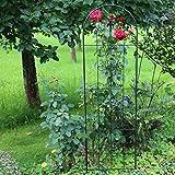 Country Garden Rankgitter 'Chiswick' | dekorative Rankhilfe für jeden Garten | elegante Lilie gibt dem Rankgitter einen besonderen Chárme | dank stabiler Ausführung perfekt für Kletter- und Schlingpflanzen