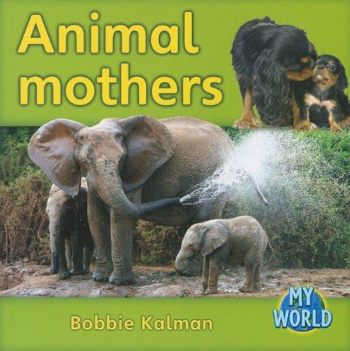 Animal Mothers (My World)