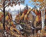 Golden Maple DIY digitale tela pittura ad olio regalo per adulti e bambini vernice di numero kit Home decorazioni- 40,6x 50,8cm