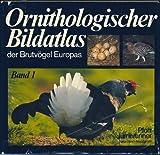Ornithologischer Bildatlas der Brutvögel Europas. (Bd. 1) - Manfred Pforr, Alfred Limbrunner