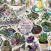 Terrarium Bundle Decor Stickers (2 Packs, 40 pcs)