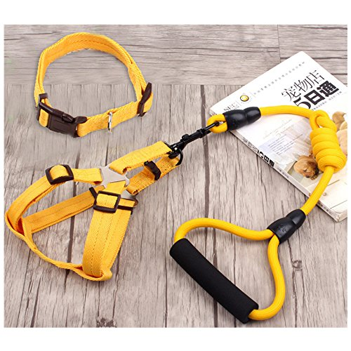 union-tesco-leash-pet-traction-ropegelb
