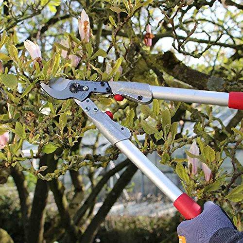 siena-garden-premium-bypass-astschere-70cm-aluminium-209109-3