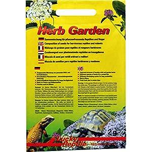Lucky Reptile Herb Garden - 2 g