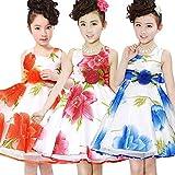 Moppi Cabrito princesa dama de honor del partido del verano de navidad floral vestido de tutú impresa