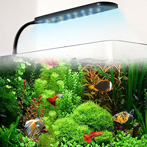 LED-Aquarium-Klemmleuchte-Lampe-Licht-Fische-Tank-Beleuchtung-48LED-4-Modus-3w-Wei-Blau