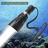 BIGMAC Professional 100M Depth Scuba Diving Flashlight Torch Cree L2 LED 1800 Lumen