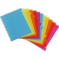 Viquel - Lot de 12 intercalaires en plastique - Maxi format (24,5x30,5cm) - Pour classeur A4 Maxi format ou classeur à…
