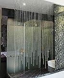 WUFENG Vorhang Sommer-Zimmer Tür Fenster Perlenvorhang Türvorhang Fadenvorhang Fadenstore Raumteiler Kreatives Perlen Quaste Design Vorhänge Anti-Moskitos Vorhänge Vorhänge (Größe : 160 * 150cm)