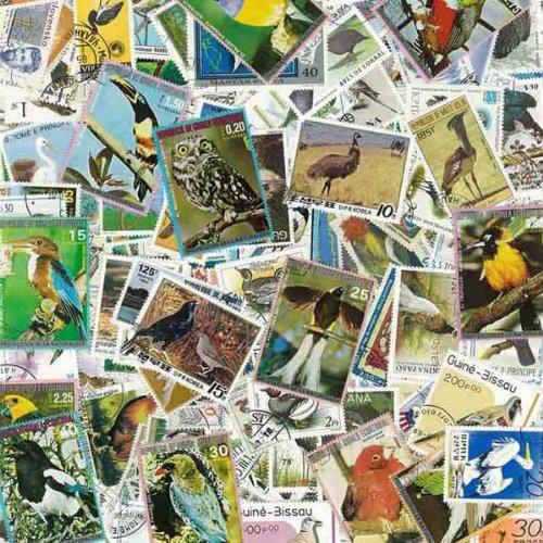 Uccelli: francobolli diversi, 1000 - Francobolli Uccelli