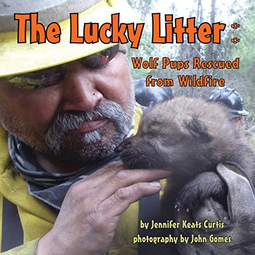 The Lucky Litter: Wolf Pups Rescued from Wildfire  Audiolibri