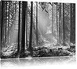 Häuschen im Wald mit Sonnenstrahlen schwarz/weiß, Format: 120x80 auf Leinwand, XXL riesige Bilder fertig gerahmt mit Keilrahmen, Kunstdruck auf Wandbild mit Rahmen, günstiger als Gemälde oder Ölbild, kein Poster oder Plakat