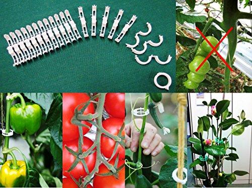Pflanzclip für Tomaten-, Gurken-, Paprikapflanzen, Orchideen etc. 160 Stück (Tomatenclip)