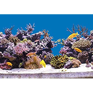 StickandShine 200 cm Aquarium Hintergrund Folie himmelblau 70 cm breite/höhe