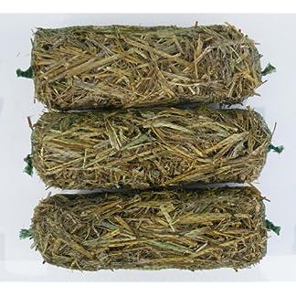 Moonfern Barley-Straw Logs 3 pack Moonfern Barley-Straw Logs 3 pack 61S2ItXRJgL