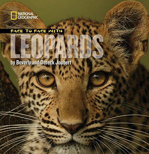 Face to Face with Leopards (Face to Face with Animals)