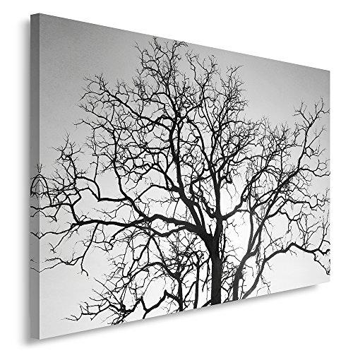 Feeby Frames, Tableau seul panneau , Tableau imprimé xxl, Tableau imprimé sur toile, Tableau deco, Canvas 60x80 cm, ARBRE, NOIR ET BLANC