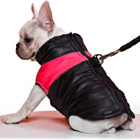 TFENG Hundemantel Hundejacke für Hunde, Warm Gepolstert Puffer Weste Welpen Regenmantel mit Fleece