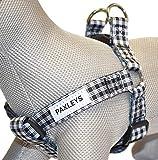 Paxleys Luxus Schwarz und Weiß Tartan Hundegeschirr Größen Medium und Large