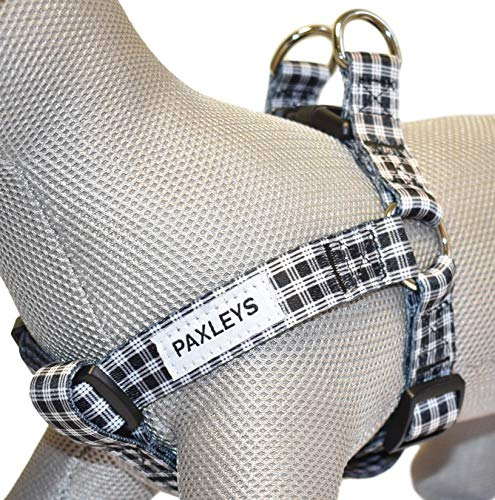 Paxleys Arnés para perro de tartán