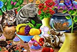 U.s. Toy Toys For Kittens - Best Reviews Guide