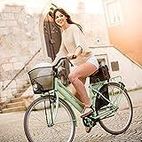 Bergsteiger Amsterdam 28 Zoll Damenfahrrad, ab 150 cm, Korb, Fahrrad-Licht, Damen-Citybike mit Rücktrittbremse, Hollandrad im Retro-Design Test