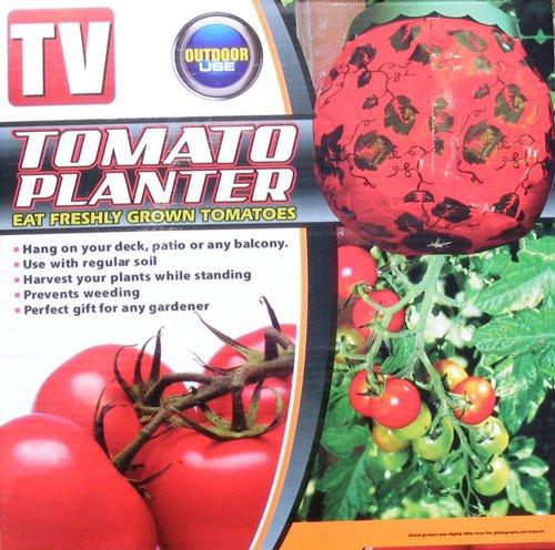 Fleurs de tomate à suspendre – Cultiver vos propres tomates