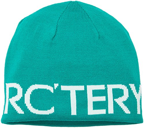 arcteryx-adulti-berretto-a-maglia-word-head-toque-unisex-strickmutze-word-head-toque-parakeet-minty-